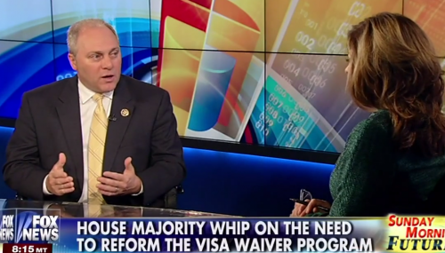 Scalise discusses House action to combat terrorism on Fox News feature image